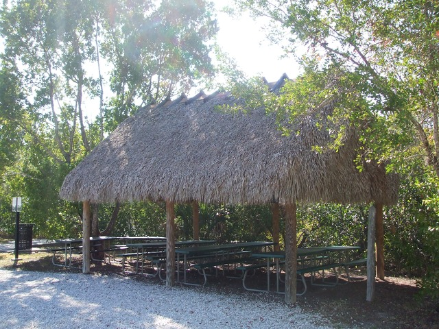 Naples Real Estate - Rookery Bay National Estuarine Research Reserve Photo