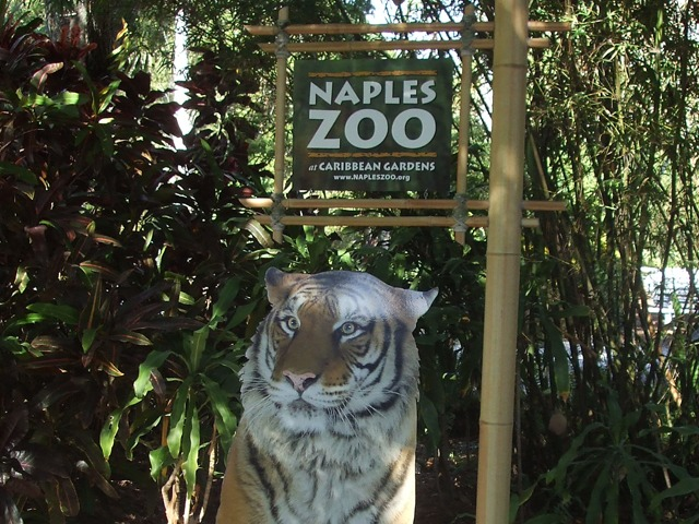 Naples Real Estate - Naples Zoo Photo