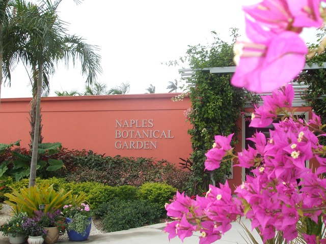 Naples Real Estate - Naples Botanical Garden Photo